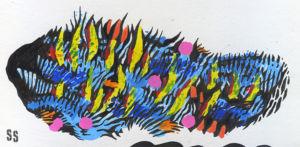 Weird Fishes 2 WEB