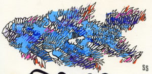 Weird Fishes 3 WEB