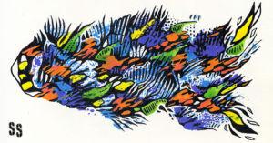 Weird Fishes 8 WEB