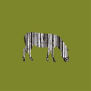 Zebra-b Code
