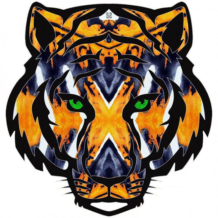 tiger tiger face LR